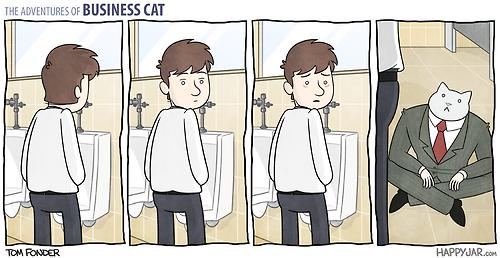 Las fantásticas aventuras del gato empresario.